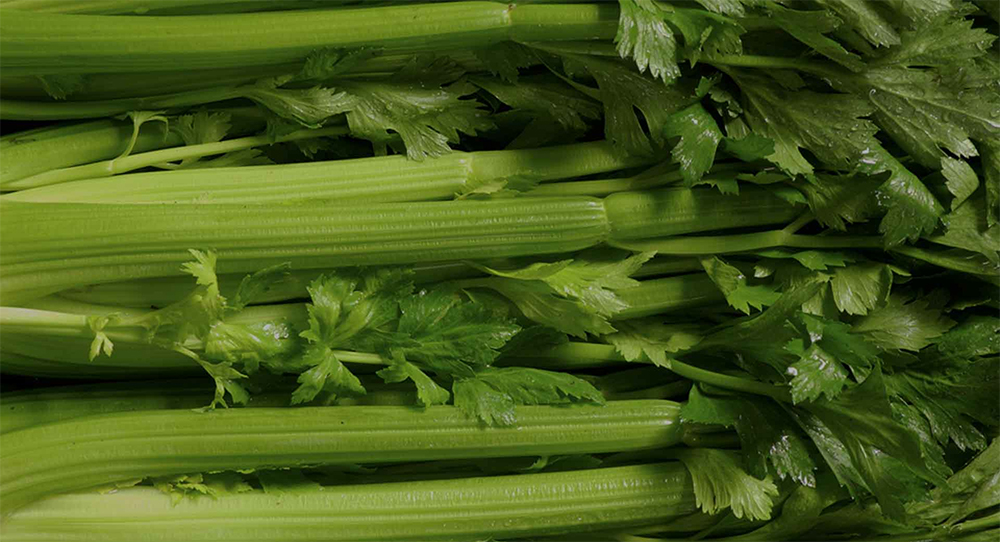 The Medical Medium and the Celery Juice Craze